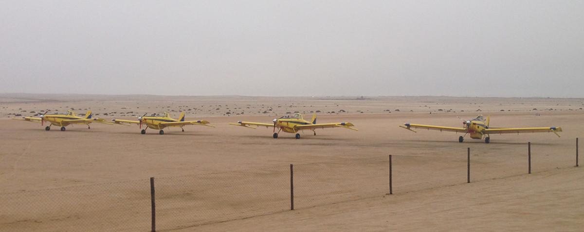 Fleet on Field